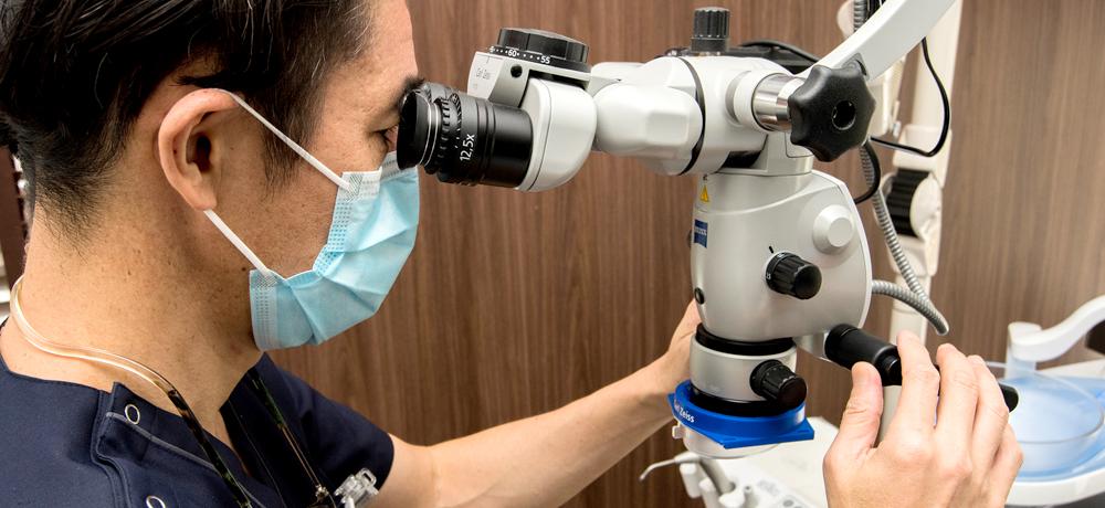 顕微鏡で確認している院長